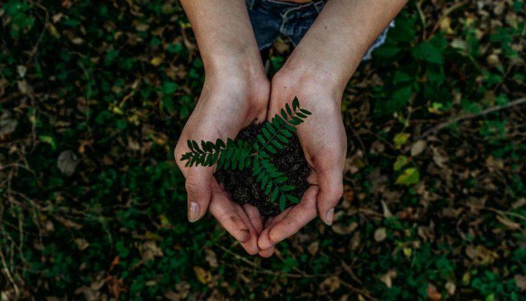 RSC y greenwashing