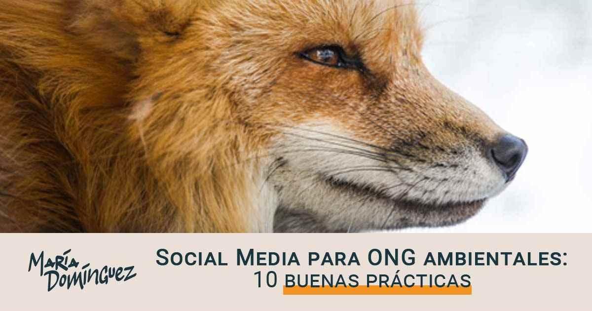 10 buenas prácticas en Social Media para ONG